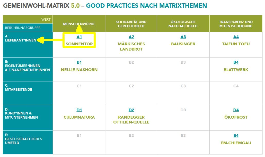 Gemeinwohl-Matrix 5.0 – Good Practices nach Matrixthemen